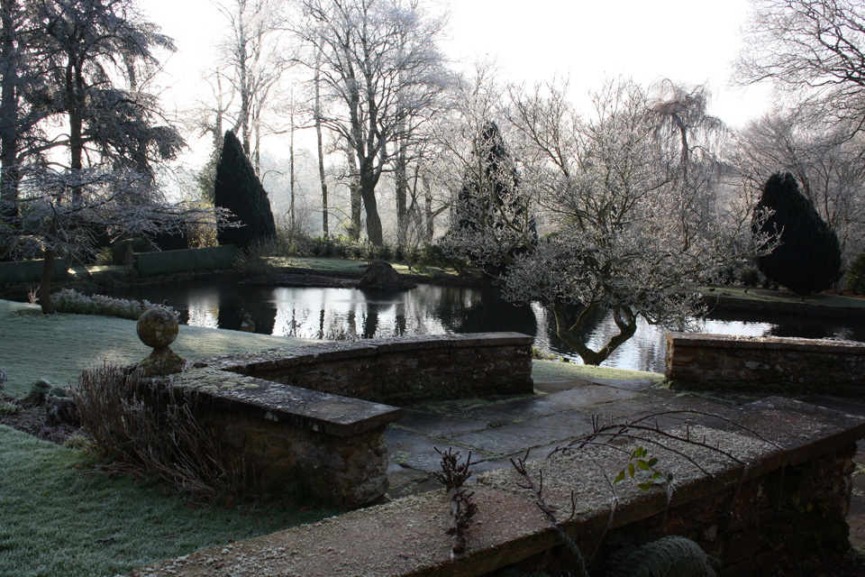 The pond in winter