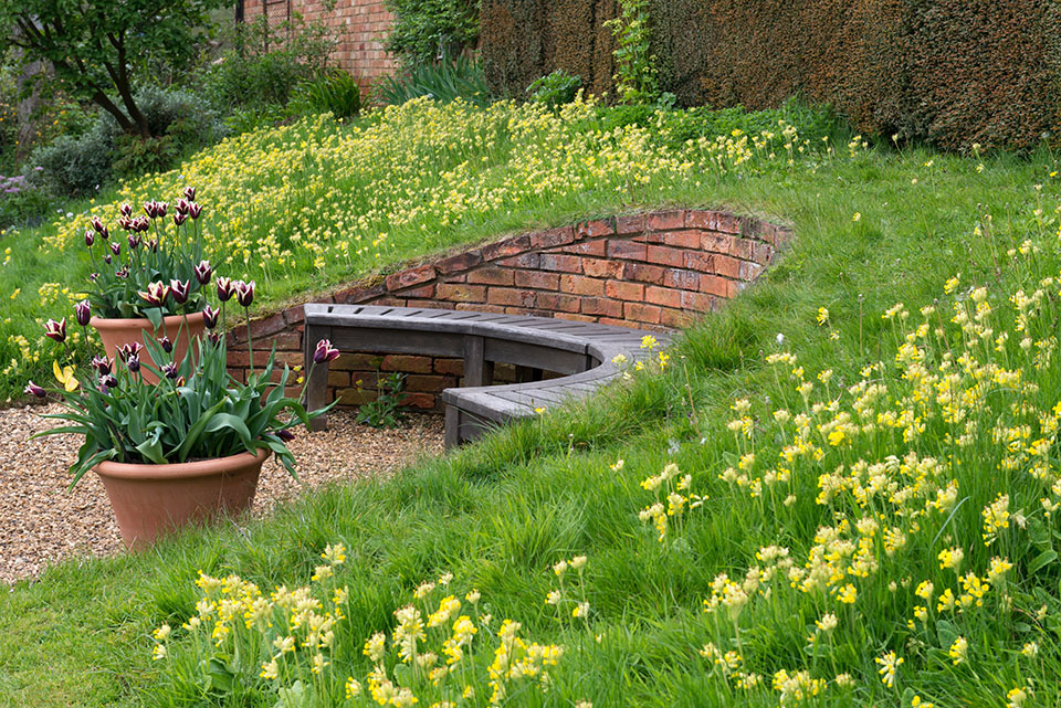 Cowslips are naturalised in a grassy bank in which a curving bench is set into semi-circular brick retaining wall.